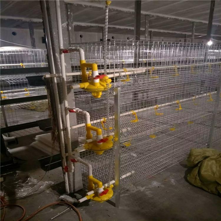 Аккумуляторные клетки для курицы Бройлера