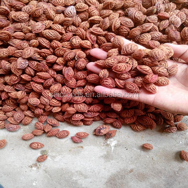 Mao tao zhong zi Wholesale Manufacturer Certified Peach Seeds For Sale