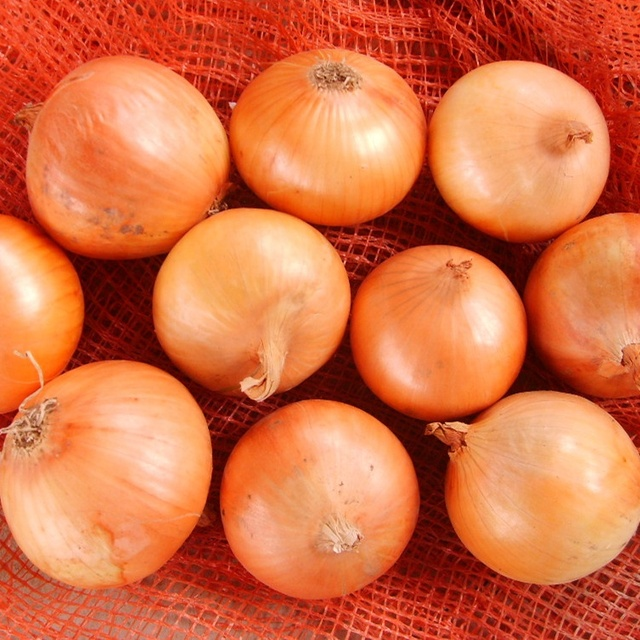 hot sale of yellow onion /producer/factory/supplier