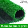 25ミリメートル夏草