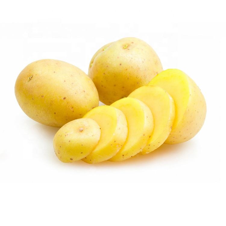 french fries frozen potato,china potato