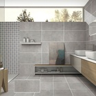 Tile Interior And Exterior Kitchen And Bathroom Wall And Floor 300X600mm Tile Anti Slip