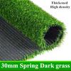 30ミリメートル春ダーク草