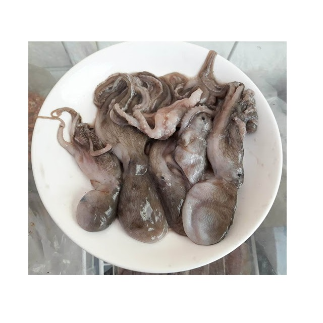 Fresh Frozen Giant / Baby Octopus with CE, EU Certificate - High Quality Nutritious Octopus for EU, Korea, USA Market