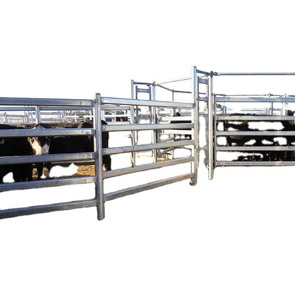 Простая установка, новый овальный рельс, оцинкованная ручка для крупного рогатого скота (XMM-CP2)