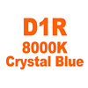 D1R 8000K