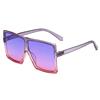 17060 KID C24 Purple Pink