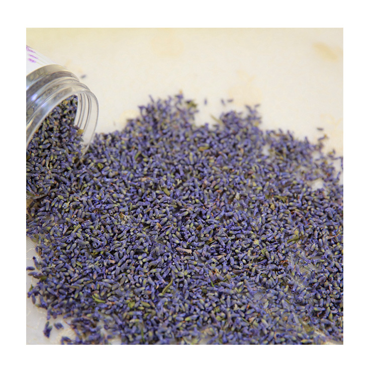 Various Good Quality Machine Lavender Dried Flower Buds - 4uTea | 4uTea.com