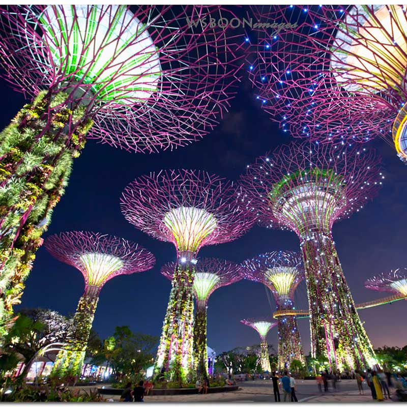 Customized super tree groves metal decorative sculptures