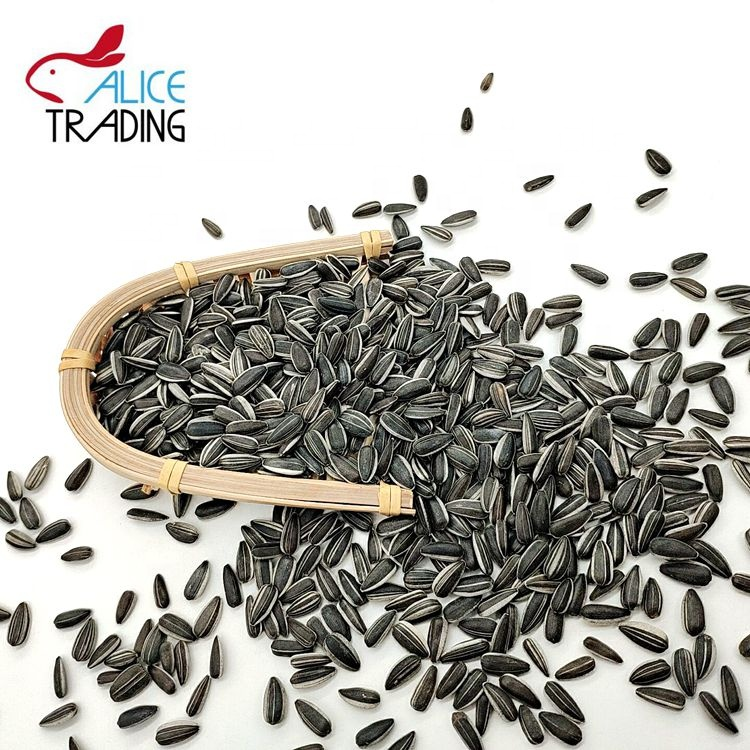 Best Quality Cheap Price Wholesale Sunflower Seeds
