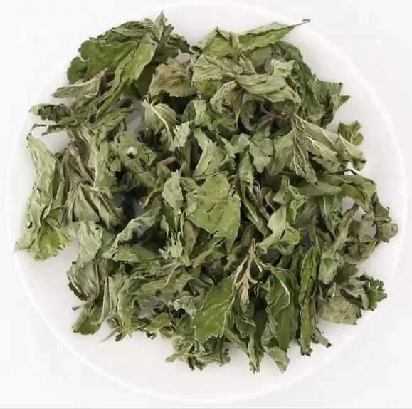 Dried Peppermint Leaf Tea Mint for Fresh Breath Tea Leaves - 4uTea | 4uTea.com