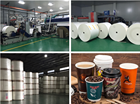 Paper Pe Coated Paper By Make Paper Cup Fans Lids In China