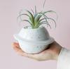 planet flower pot1
