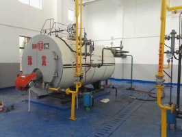 Widely Used Low Price Eco-Friendly 2 Ton Gas Fired Boiler For Sale