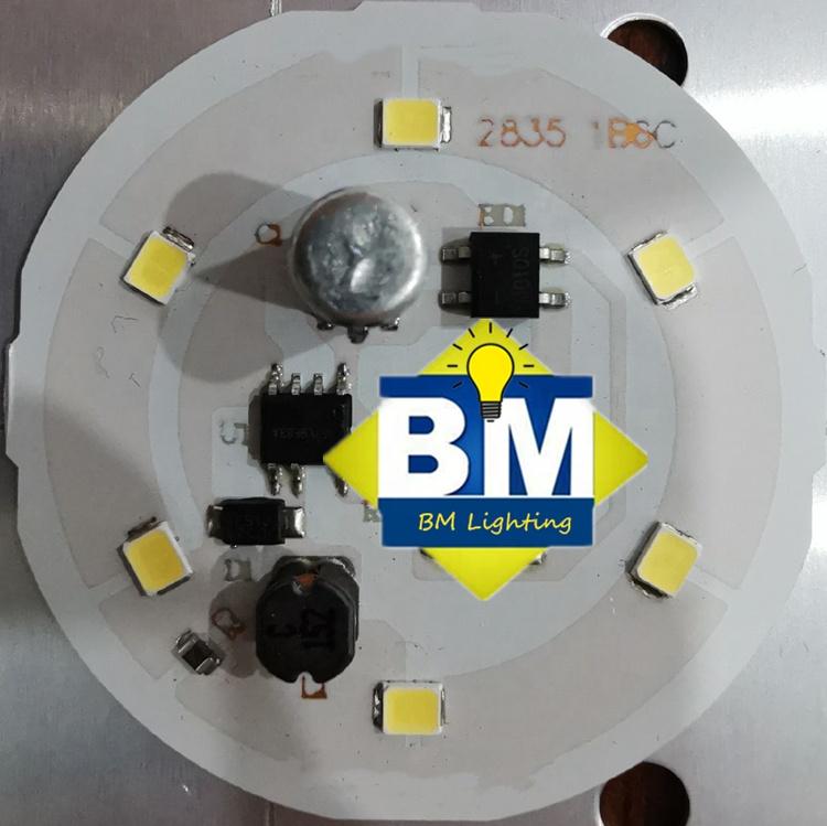 LED COB Chip AC 220V 10W 20W 30W 50W Smart  Need Driver LED Bulb Lamp for Flood