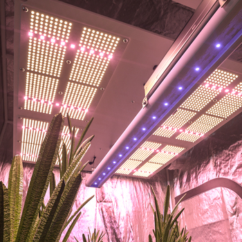 Enhance blooming and longer time UV IR Far Red led grow light single bar 50W UV 400nm improve flower quality plant light