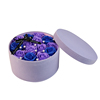 Blue+Purple
