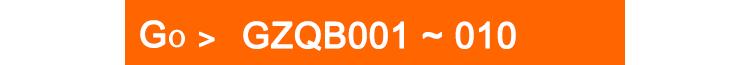 GZQB001-010