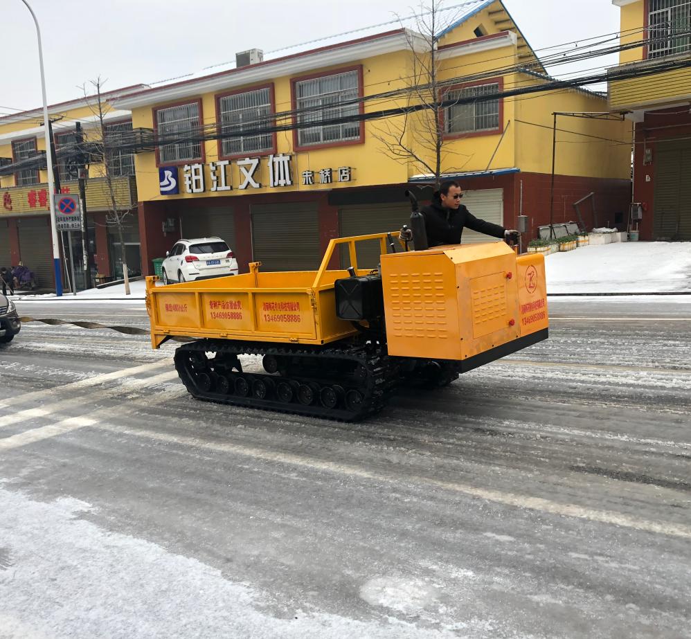 4 Ton loading crawler dumper track vehicle