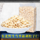 Nuts High Quality Pine Nuts Good Price From China Factory