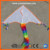 DIY painting  Delta flying   kite for  sale