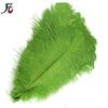 55-60cm green