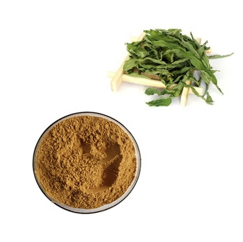 Fast Delivery Sabah Snake Grass/Clinacanthus Nutans Powder in Bulk