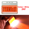 Amber + White 24V
