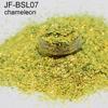 BSL07