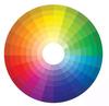cusrtom colors