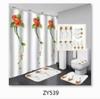 ZY539