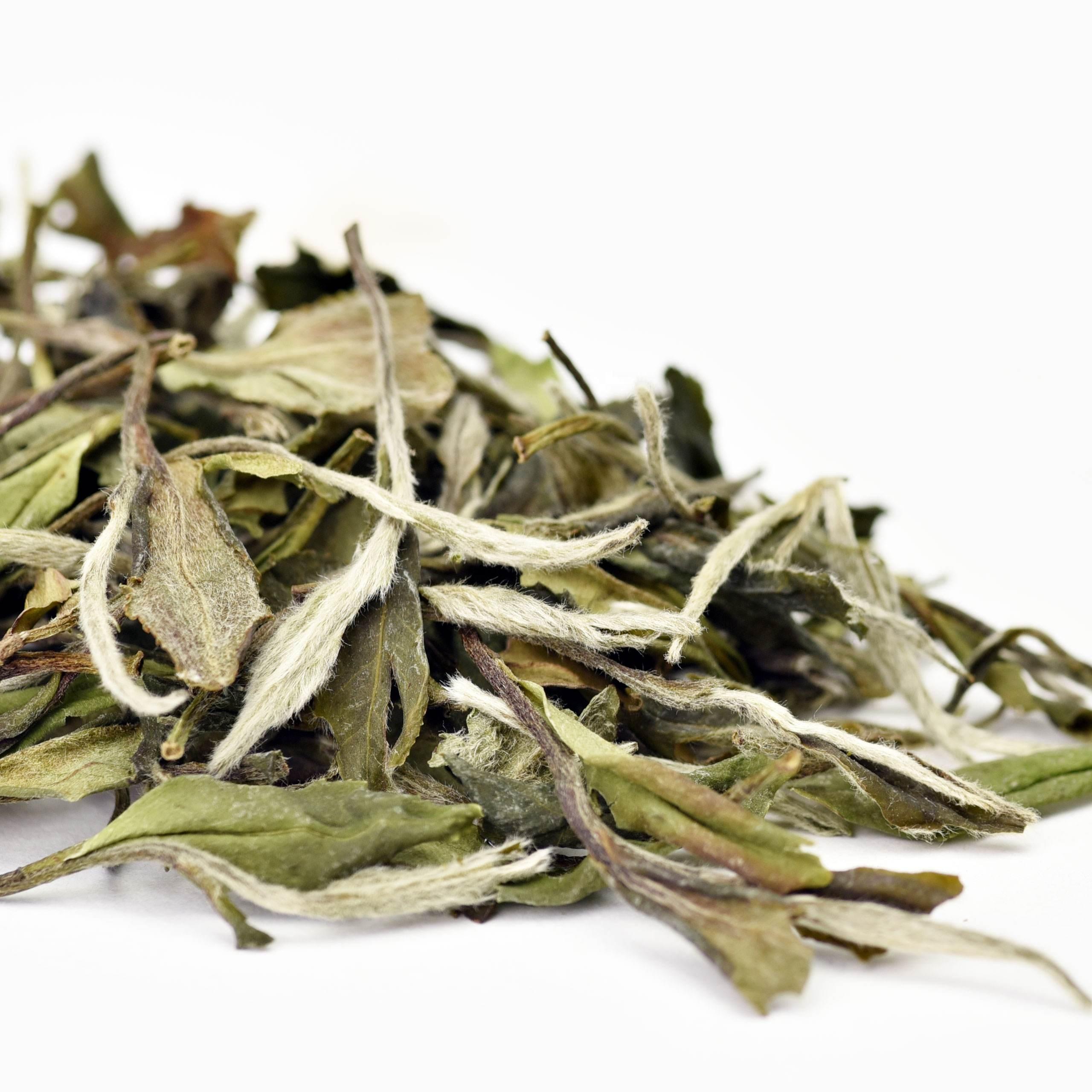 Organic White Tea with Good Price White Peony Tea - 4uTea | 4uTea.com