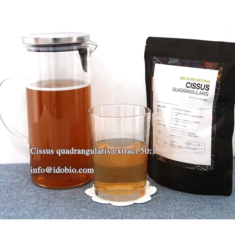 Cissus quadrangularis 50:1 extract powder