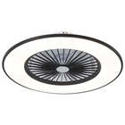 Ceiling Fan Lamp Fan Ceiling Fan With 24W LED Light 3 Shades Hidden And Protected Interior Blades 3 Speeds Remote Control Memory And Timer 56cm