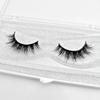 3D vison eyelashes-3D16