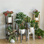 Plant Plants Wood Plant Stand Factory Supply 2 Tier Tall Table Top Decor Natural Bamboo Wood Plant Stands For Indoor Plants