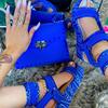 blue-LL-ban set