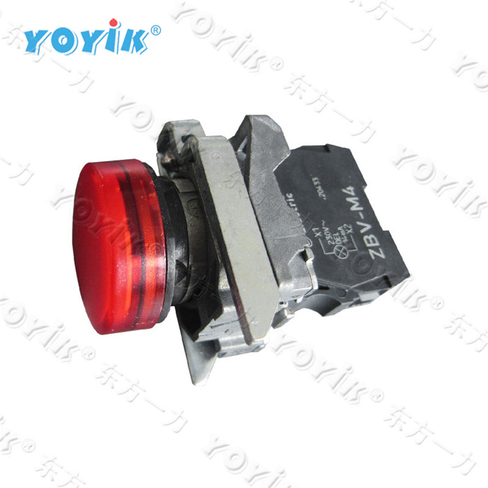 XB4BVM Industrial 220V LED Indicator Lights