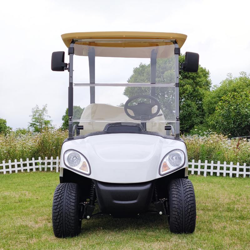 2 человека электрический автомобиль внедорожник гольф-кары для продажи