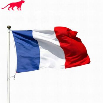 High Quality Cheap Price Free Sample Flag Maker 3X5ft Large Custom Printing France Football Polyester Flag