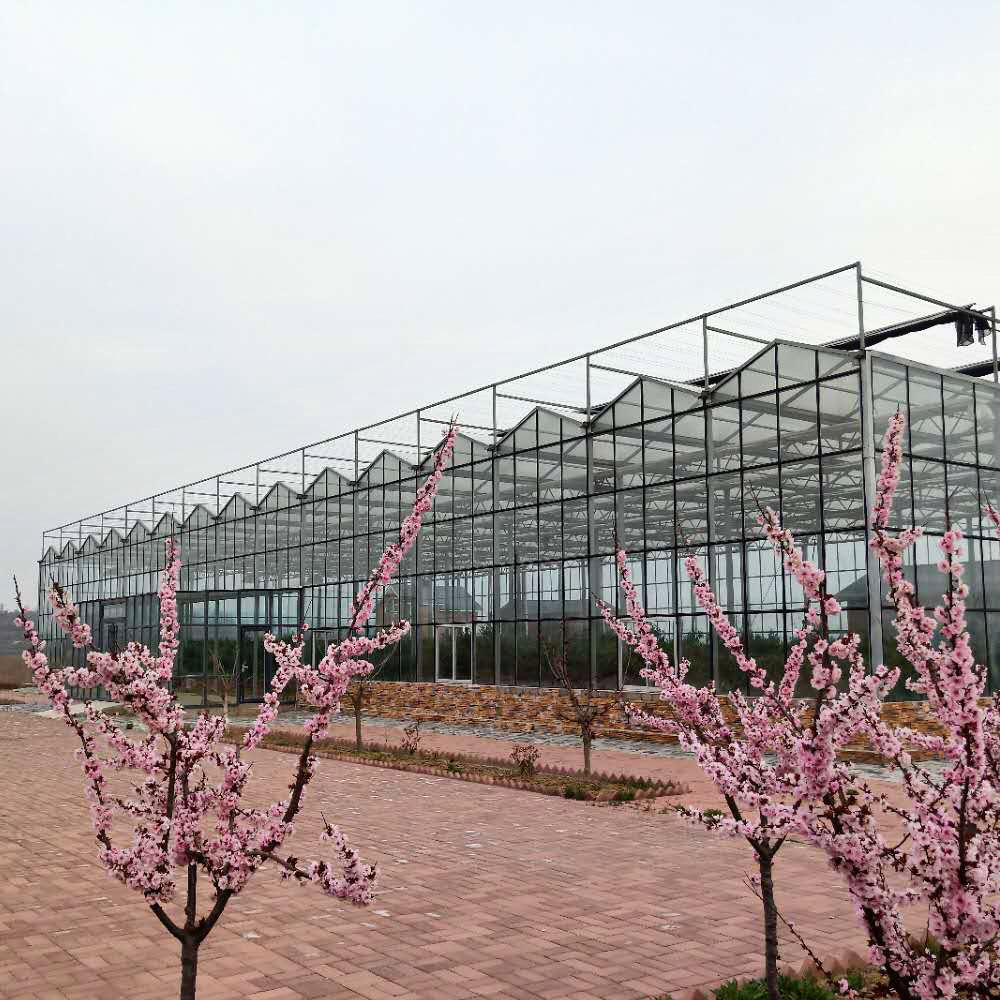 Customized long life&good transparency glass greenhouse with hydroponic growing system