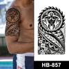 HB-857