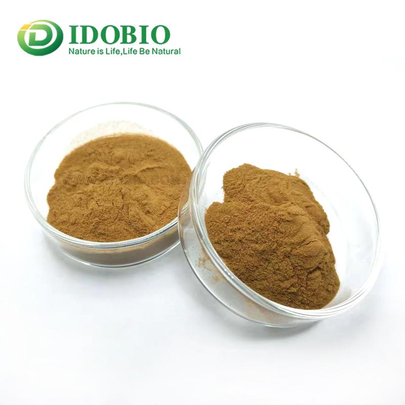 Ethanol reflux extraction Echinacea extract powder/echinacea
