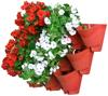 Brick red-3 pots in 1