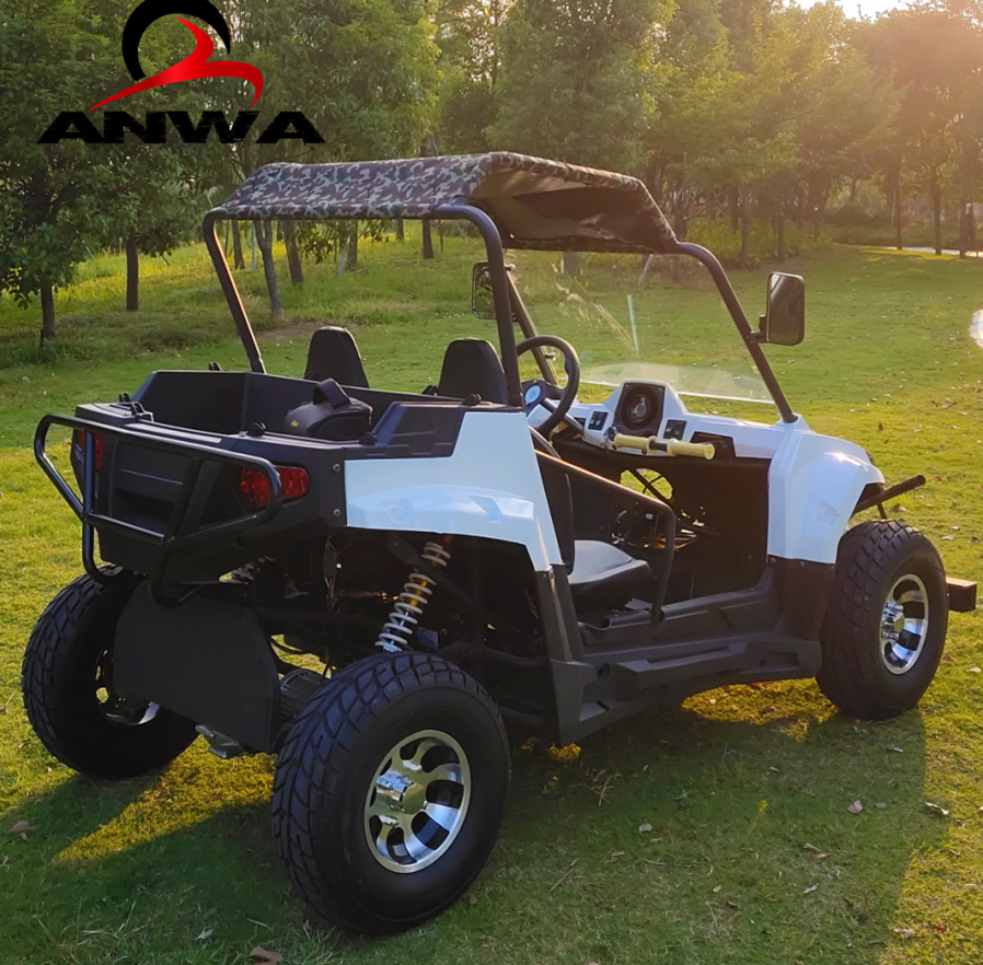 Cheap 5KW 4WD Adults Electric Side By Side UTV
