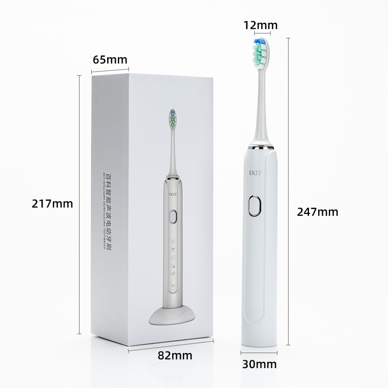 2021 Sonic Electric Toothbrush USB Rechargeable Nano Toothbrush With Hard Shell Case For Adult