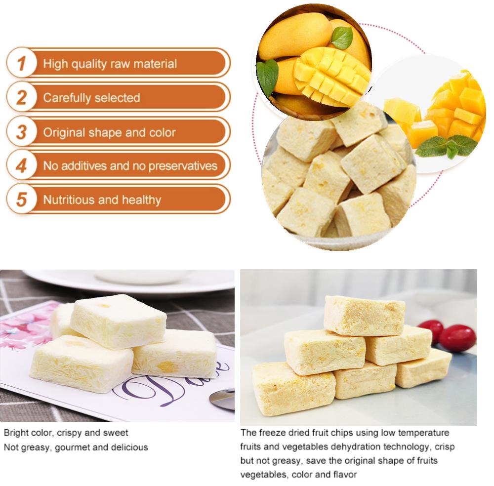 Natural freeze Dried Yogurt Mango premium grade fresh Frozen Yogurt Mango pieces Yoghourt with right prices