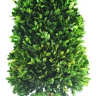 Artificial Wholesale Natural Preserved Boxwood Plants Topiary Artificial Boxwood Trees Making For Decoration