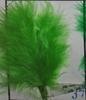 Chaux vert