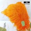 042# Orange
